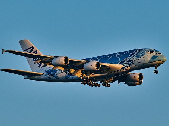 ANA A380-841